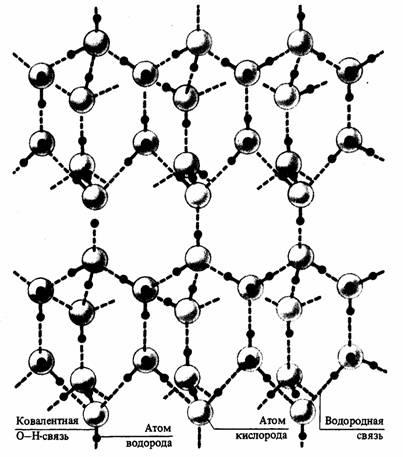 Каждая молекула воды